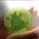 Глоссарий терминов по охране окружающей среды (англо-русский)
